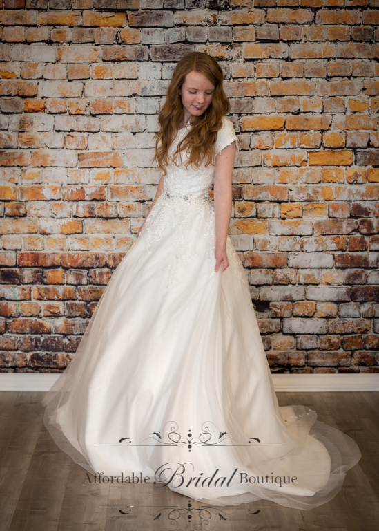 Ivory Ball Gown (D113 Size 2)